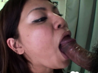 Busty brunette Asian gets..