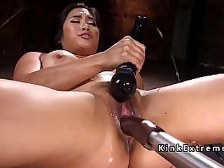 Big tits and big booty..